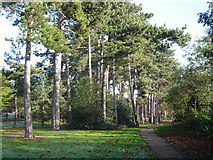 TQ1289 : Pinner Memorial Park by Nigel Cox