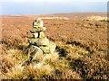 NZ6201 : Unmapped Cairn, Middle Head by Mick Garratt