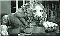 SK2670 : Lion by Peter Ward