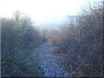 TQ5359 : The North Downs Way, near Otford by Hywel Williams