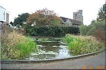 TQ1395 : Bushey: The Church of St James, and the Pond by Nigel Cox