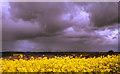 NZ1463 : Big sky over Crawcrook by Mark Richards