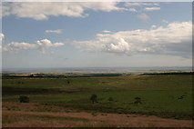 NU1341 : Holy Island from near St Cuthbert's Cave by Phil Thirkell