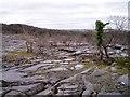 SD5378 : Limestone pavement, Clawthorpe Fell by David Gruar