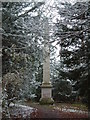 "SP9310 : ""Nell Gwyn's Monument"" - Obelisk in Tring Park by Rob Farrow"