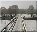 NT9503 : Footbridge over the Coquet between Holystone and Sharperton by Alan Fearon