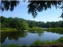 NJ9308 : River Don at Seaton Park by Richard Slessor