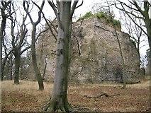 NT0783 : The Gellet Rock. by Paul McIlroy