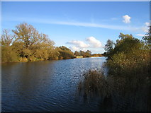 TM4392 : River Waveney by Mouse