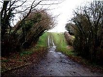 SP9409 : Muddy lanes, Wigginton Bottom by Rob Farrow