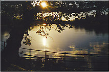 TQ0153 : Late afternoon on the flooded water meadow at Sutton Place by Colin Smith
