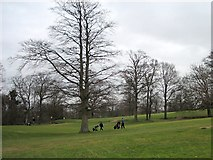 NO1526 : Murrayshall Golf Course by Lis Burke