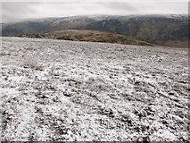 NN8031 : North west slopes of Auchnafree Hill by Callum Black
