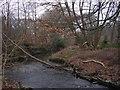 SJ8687 : Micker Brook by Keith Williamson