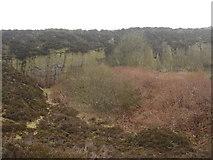 SD6913 : Horrocks Fold Quarries by Margaret Clough