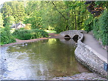 SS9843 : Gallox Bridge - Dunster, Somerset by Catherine Edwards