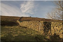 NZ7106 : Dry stone wall by Crossley Gate Farm Fryup by Colin Grice