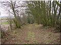 NY3256 : Footpath at Thurstonfield by Bob Jenkins