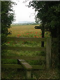 TA0779 : Wolds Way, Muston Wold by Oliver Dixon
