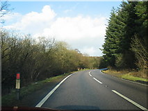 NR8262 : Woodland to the left and right of the A83. by Johnny Durnan