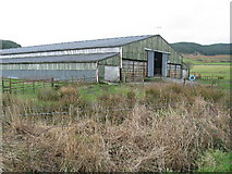 NR8261 : Large livestock shed at Redhouse by the B8001. by Johnny Durnan