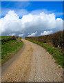 TQ5104 : Comp Lane by Simon Carey