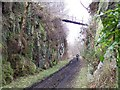NU0800 : Derelict footbridge over disused railway, Coquet Dale, Rothbury, Northumberland. by Ralph Rawlinson