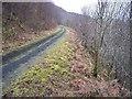 NU0700 : Disused railway, Coquet Dale, Rothbury, Northumberland by Ralph Rawlinson