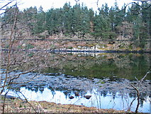 NR7588 : Looking across the narrows of Caol Scotnish. by Johnny Durnan