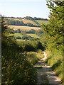 SY7283 : Bridleway near Osmington by Derek Harper