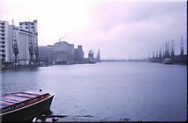 TQ4180 : Royal Victoria Dock, 1973 by Pierre Terre