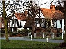 TL6706 : Aubyns, Writtle, Essex by Robert Edwards