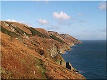 SS1444 : East Sidelands, Lundy by Grant Sherman