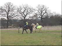 TQ2197 : Riders on new bridleway, Saffron Green by David Hawgood
