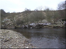 NZ2313 : Manfield Scar : River Tees. Low Coniscliffe by Hugh Mortimer