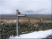 NY7340 : Footpath junction, Pennine Way by Andrew Smith