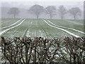 SE2844 : Snowy fields at Ingfield Farm by Derek Parkinson