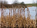 NZ4922 : Haverton Hill Lake by Mick Garratt