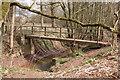 SO8166 : Footbridge over Dick Brook by Philip Halling