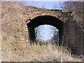 NZ2416 : Disused Railway Bridge by Hugh Mortimer