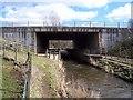 NY4932 : River bridge under M6. by John Holmes