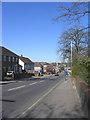 TQ5586 : St Marys Lane, Upminster by John Winfield