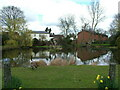 TL2518 : Woolmer Green Village Pond by Melvyn Cousins