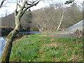 SX8482 : River Teign near Canonteign by Derek Harper