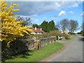 NU1337 : Coastguard Cottages, Ross by Dave Dunford