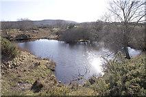 SY9583 : Pond, New Mills Heath by John Lamper