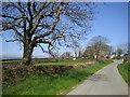 SN0618 : Lane by Potterslade by John Winterbottom