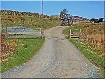 NX2161 : Farm road to Garvilland by Oliver Dixon