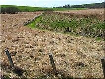 NX3059 : Rough pasture near Mindork Farm by Oliver Dixon