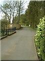 NO2301 : Strathenry House driveway by James Allan